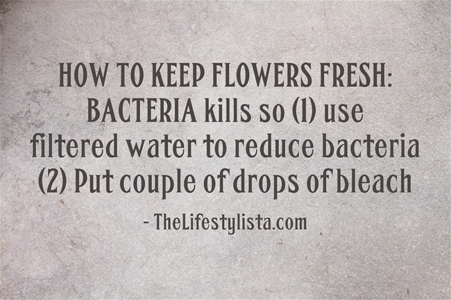 HOW TO KEEP FLOWERS FRESH… 2 top secret worldclass florist tips!