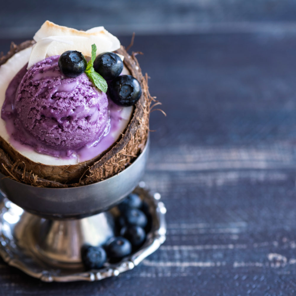 Heavenly Blueberry Ice Cream made at home in a Vitamix